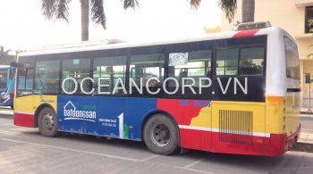 quang-cao-xe-bus-blueocean-10958