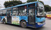quang-cao-xe-bus-blueocean-3882
