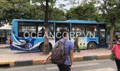 quang-cao-xe-bus-blueocean-3896