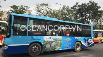 quang-cao-xe-bus-blueocean-4054