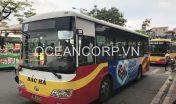 quang-cao-xe-bus-blueocean-4148
