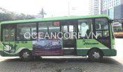 quang-cao-xe-bus-blueocean-4946