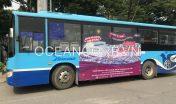 quang-cao-xe-bus-blueocean-5026