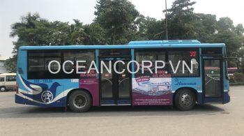 quang-cao-xe-bus-blueocean-5050