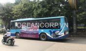 quang-cao-xe-bus-blueocean-5070