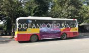 quang-cao-xe-bus-blueocean-5094