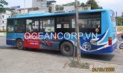 quang-cao-xe-bus-blueocean-5104
