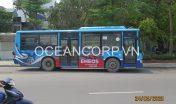 quang-cao-xe-bus-blueocean-5106