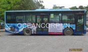 quang-cao-xe-bus-blueocean-5118