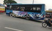 quang-cao-xe-bus-blueocean-5156