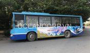 quang-cao-xe-bus-blueocean-5252