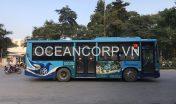 quang-cao-xe-bus-blueocean-5312