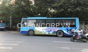 quang-cao-xe-bus-blueocean-5326