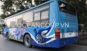 quang-cao-xe-bus-blueocean-5338