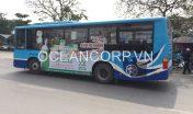 quang-cao-xe-bus-blueocean-7130