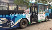 quang-cao-xe-bus-blueocean-7134