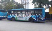 quang-cao-xe-bus-blueocean-7136
