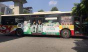 quang-cao-xe-bus-blueocean-7238