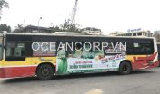 quang-cao-xe-bus-blueocean-7240