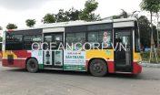 quang-cao-xe-bus-blueocean-7248