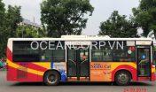quang-cao-xe-bus-duoc-dai-bac276
